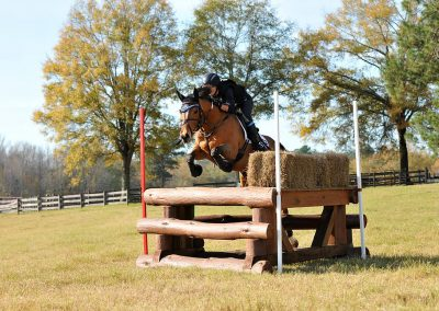 Reeses Bigtime Eventing Competition Horses